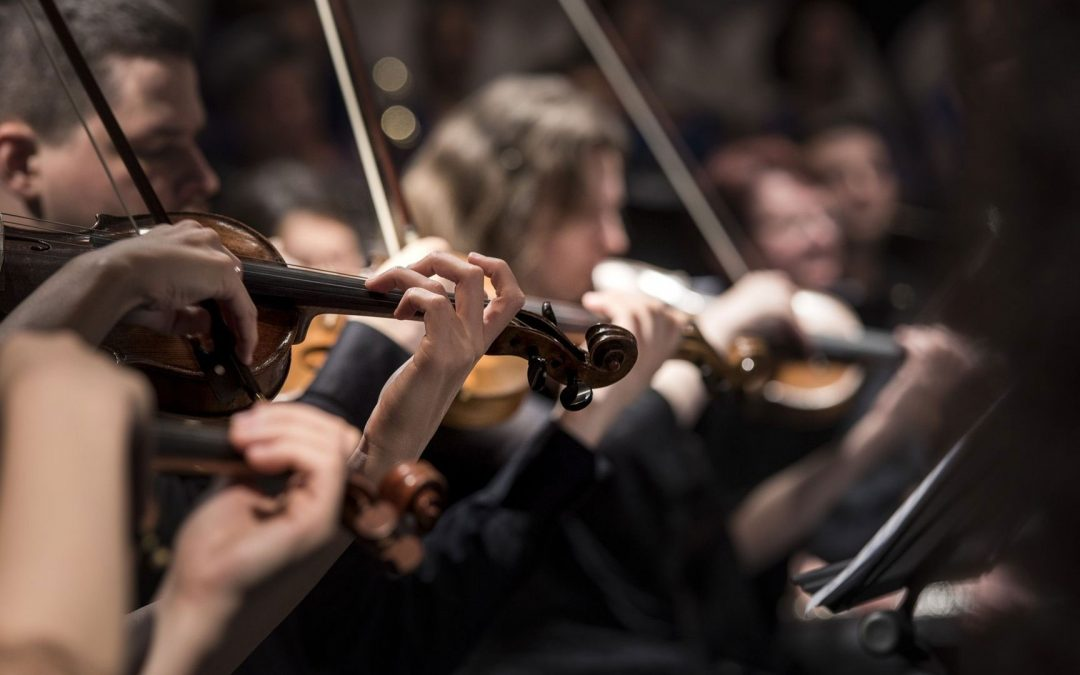 Music | The Orchestra