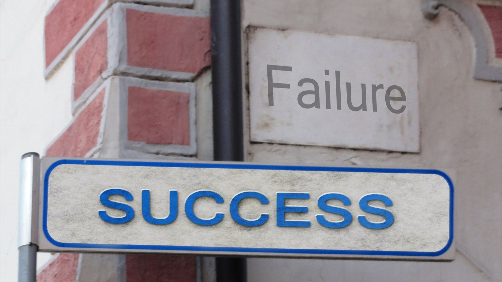 Episode 351 Business English Financial Success and Failure