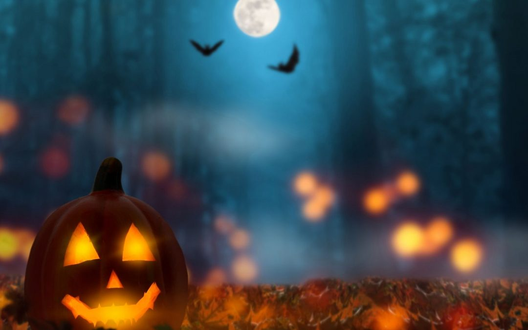 Knowledge Plus | What Is Halloween?