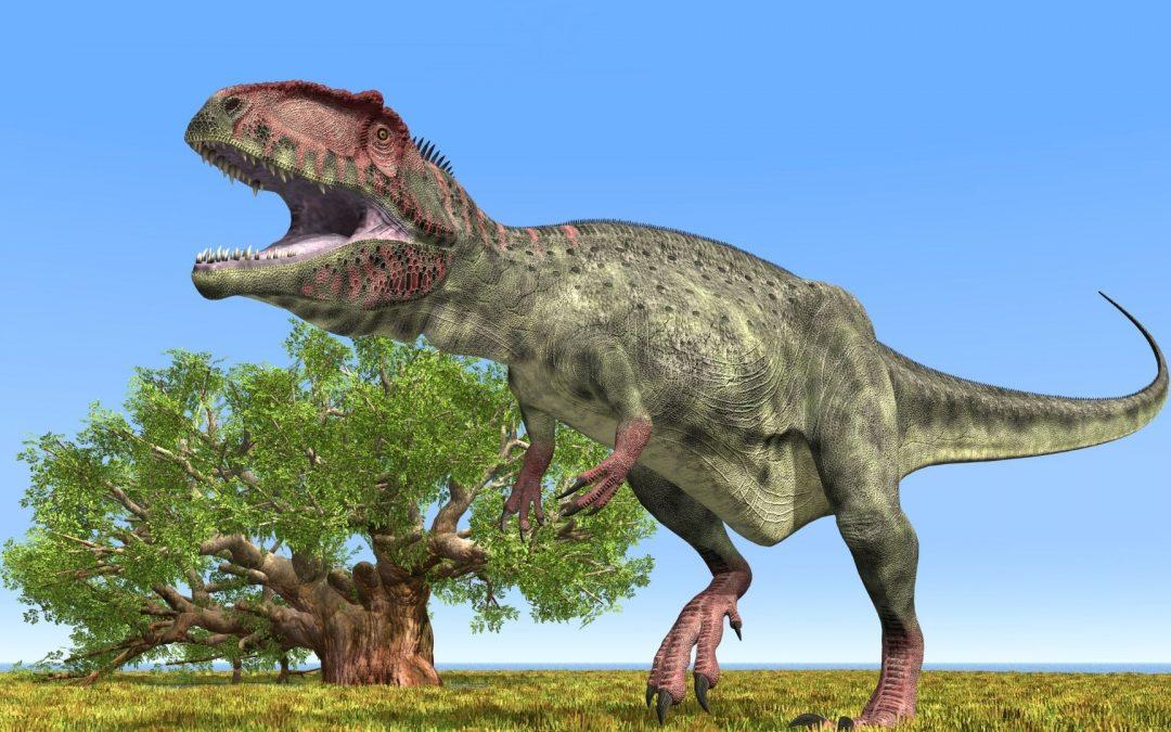 Word Power | Giganotosaurus