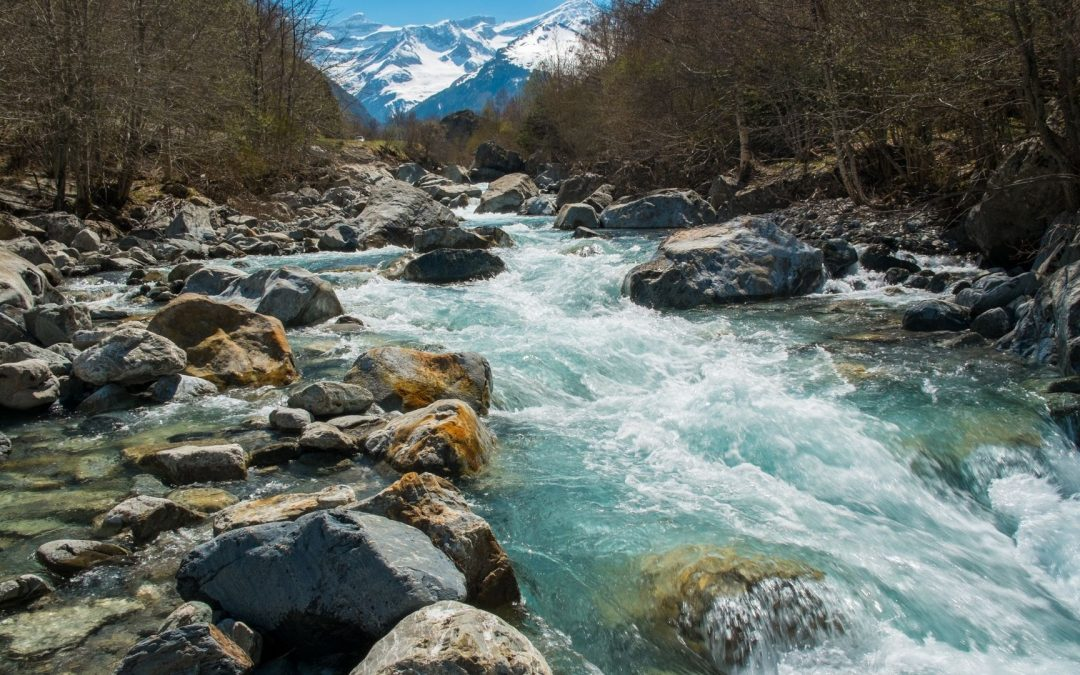 Knowledge Plus | What Do You Know About Rivers?